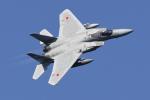 shootingstarさんが、茨城空港で撮影した航空自衛隊 F-15J Eagleの航空フォト(写真)