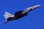 Flankerさんが、茨城空港で撮影した航空自衛隊 F-15J Eagleの航空フォト(写真)