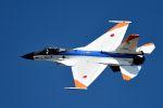 うめやしきさんが、岐阜基地で撮影した航空自衛隊 F-2Aの航空フォト(飛行機 写真・画像)