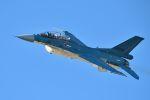 うめやしきさんが、岐阜基地で撮影した航空自衛隊 F-2Bの航空フォト(飛行機 写真・画像)