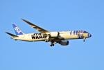 sonnyさんが、成田国際空港で撮影した全日空 787-9の航空フォト(写真)