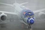 Airfly-Superexpressさんが、宮崎空港で撮影した全日空 787-9の航空フォト(写真)