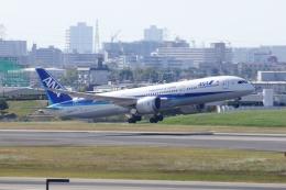 しんさんが、伊丹空港で撮影した全日空 787-9の航空フォト(写真)