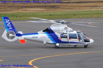 Chofu Spotter Ariaさんが、札幌飛行場で撮影したオールニッポンヘリコプター AS365N2 Dauphin 2の航空フォト(飛行機 写真・画像)