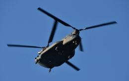 青い翼に鎧武者マークの!さんが、市ヶ谷地区で撮影した陸上自衛隊 CH-47JAの航空フォト(飛行機 写真・画像)