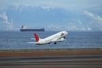 SKYLINEさんが、中部国際空港で撮影したJALエクスプレス 737-446の航空フォト(写真)