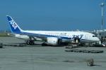 いずみわおさんが、那覇空港で撮影した全日空 787-8 Dreamlinerの航空フォト(写真)