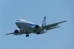 いずみわおさんが、那覇空港で撮影したANAウイングス 737-54Kの航空フォト(写真)