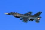 take_2014さんが、入間飛行場で撮影した航空自衛隊 F-2Aの航空フォト(飛行機 写真・画像)