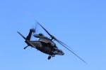 take_2014さんが、入間飛行場で撮影した航空自衛隊 UH-60Jの航空フォト(飛行機 写真・画像)