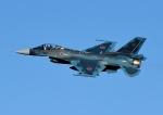 じーく。さんが、入間飛行場で撮影した航空自衛隊 F-2Aの航空フォト(写真)