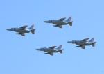 じーく。さんが、入間飛行場で撮影した航空自衛隊 T-4の航空フォト(飛行機 写真・画像)