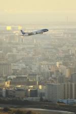 RUNDY!さんが、伊丹空港で撮影した全日空 787-9の航空フォト(写真)