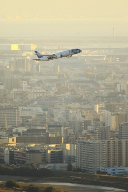 RUNDY!さんが、伊丹空港で撮影した全日空 787-9の航空フォト(飛行機 写真・画像)