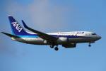 りんたろうさんが、成田国際空港で撮影した全日空 737-781/ERの航空フォト(写真)