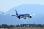 サボリーマンさんが、松山空港で撮影した全日空 787-8 Dreamlinerの航空フォト(写真)