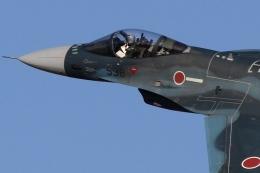 ファインディングさんが、入間飛行場で撮影した航空自衛隊 F-2Aの航空フォト(写真)