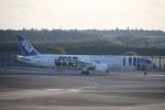 たみぃさんが、成田国際空港で撮影した全日空 787-9の航空フォト(写真)