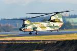 kamerajiijiさんが、入間飛行場で撮影した航空自衛隊 CH-47J/LRの航空フォト(写真)