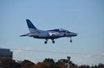 hirokongさんが、入間飛行場で撮影した航空自衛隊 T-4の航空フォト(飛行機 写真・画像)