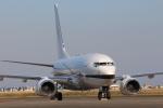 スポット110さんが、羽田空港で撮影したジョンリン・エア・トランスポート 737-73Q BBJの航空フォト(写真)