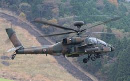 asuto_fさんが、日出生台演習場で撮影した陸上自衛隊 AH-64Dの航空フォト(飛行機 写真・画像)