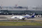 T.Sazenさんが、羽田空港で撮影した全日空 787-8 Dreamlinerの航空フォト(飛行機 写真・画像)