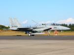 アイスコーヒーさんが、入間飛行場で撮影した航空自衛隊 F-15J Eagleの航空フォト(飛行機 写真・画像)