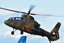 canaanさんが、入間飛行場で撮影した陸上自衛隊 OH-1の航空フォト(飛行機 写真・画像)