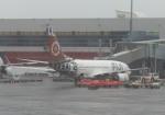 ツインオッターさんが、オークランド国際空港で撮影したフィジー・エアウェイズ 737-7X2の航空フォト(写真)