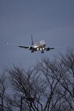 snow_shinさんが、福岡空港で撮影したスカイマーク 737-8ALの航空フォト(写真)