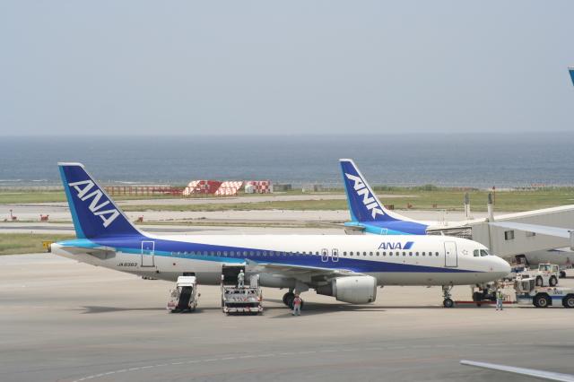 さちやちさんが、那覇空港で撮影した全日空 A320-211の航空フォト(飛行機 写真・画像)