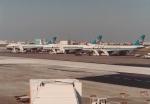 AntonioKさんが、羽田空港で撮影した全日空 747SR-81の航空フォト(写真)