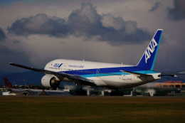 yuu@HKD/RJCHさんが、函館空港で撮影した全日空 777-281の航空フォト(飛行機 写真・画像)