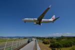 サボリーマンさんが、高知空港で撮影した日本航空 737-846の航空フォト(飛行機 写真・画像)
