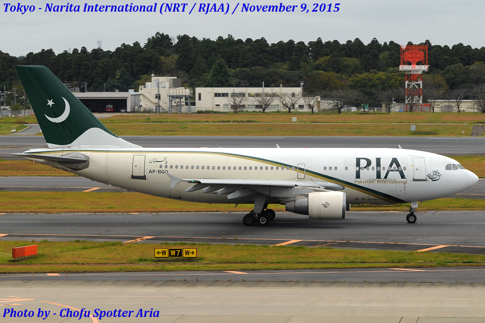 Chofu Spotter Ariaさんのパキスタン国際航空 Airbus A310-300 (AP-BGO) 航空フォト