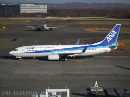 OM Aviation Imagesさんが、新千歳空港で撮影した全日空 737-881の航空フォト(飛行機 写真・画像)