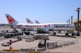 yuu@HKD/RJCHさんが、ダニエル・K・イノウエ国際空港で撮影したJALウェイズ 747-346の航空フォト(飛行機 写真・画像)