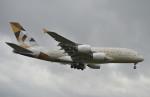 IL-18さんが、ロンドン・ヒースロー空港で撮影したエティハド航空 A380-861の航空フォト(写真)