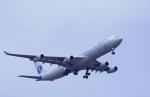 kumagorouさんが、成田国際空港で撮影したサベナ・ベルギー航空 A340-311の航空フォト(飛行機 写真・画像)