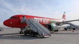 bigheadさんが、サビハ・ギョクチェン国際空港で撮影したマイエア A320-231の航空フォト(飛行機 写真・画像)