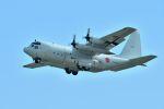 うめやしきさんが、厚木飛行場で撮影した海上自衛隊 C-130Rの航空フォト(飛行機 写真・画像)