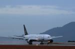 サボリーマンさんが、松山空港で撮影した全日空 777-281の航空フォト(写真)