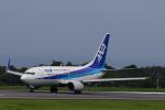 かみじょー。さんが、大島空港で撮影した全日空 737-781の航空フォト(写真)