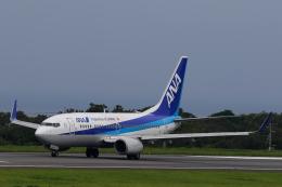 かみじょー。さんが、大島空港で撮影した全日空 737-781の航空フォト(飛行機 写真・画像)