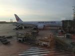 511hotakaさんが、パリ シャルル・ド・ゴール国際空港で撮影した日本航空 787-8 Dreamlinerの航空フォト(写真)