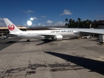 511hotakaさんが、ダニエル・K・イノウエ国際空港で撮影した日本航空 767-346/ERの航空フォト(写真)