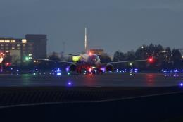 bushitsukeさんが、函館空港で撮影した全日空 737-881の航空フォト(飛行機 写真・画像)