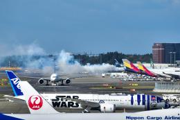 パンダさんが、成田国際空港で撮影した不明の航空フォト(写真)