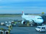 mucchanさんが、エドモントン国際空港で撮影したエア・カナダ A320-211の航空フォト(写真)